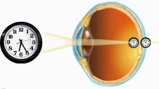 Урок физики глаз зрение